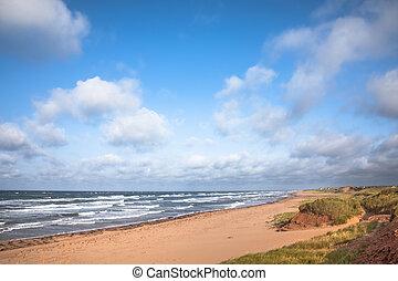 mares, isla, abandonado, edward, picado, playa, príncipe