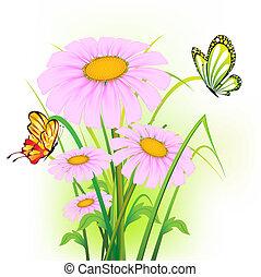 margarida flor