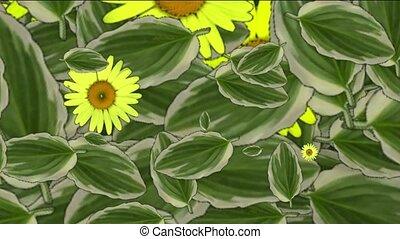 margarida, folhas, primavera, flor, amarela,  &