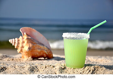 Margarita and Seashell on Beach - Margarita on beach with...