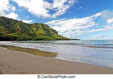 margem norte, praia, honolul
