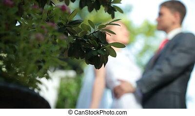 mariée, palefrenier, baisers