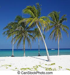 Maria la Gorda Beach, Pinar del Rio Province, Cuba