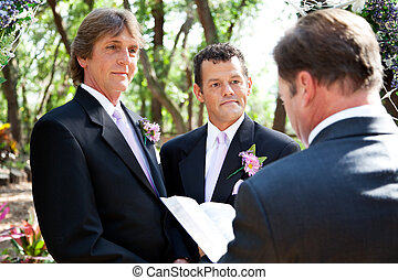 mariage, -, engagement, gay, vie