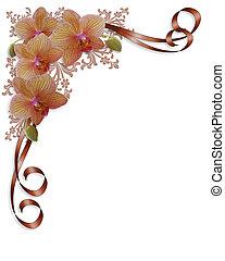 mariage, orchidées, frontière, floral