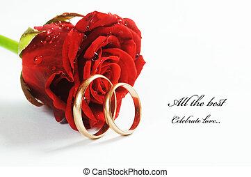 mariage, rose rouge, anneau