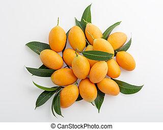 Marian plum isolated on white background