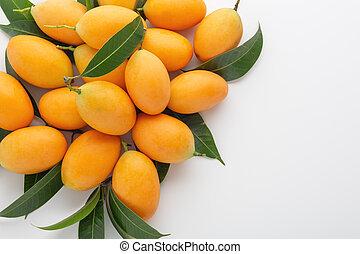 Marian plum or plango on white background