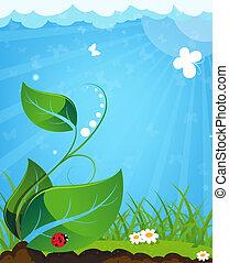marienk�fer, pflanze, junger