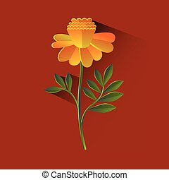 Marigold Flower Blossom Brown Background