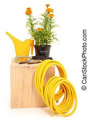 Marigold Garden Tools