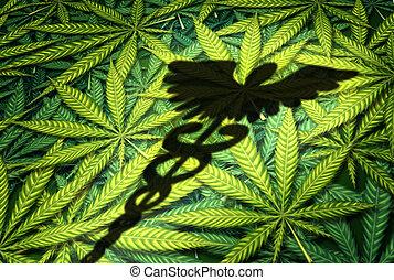 marihuána, orvosi