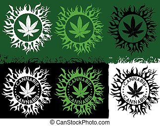 marihuana, cannabis, grünes blatt