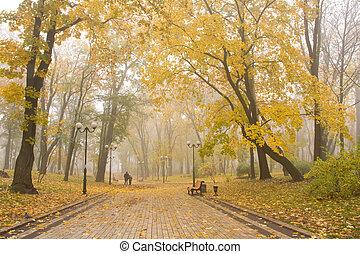 Mariinsky foggy park