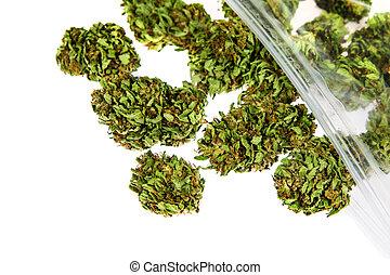 marijuana, brotes, aislado, blanco, plano de fondo