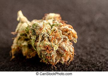 marijuana, brotes