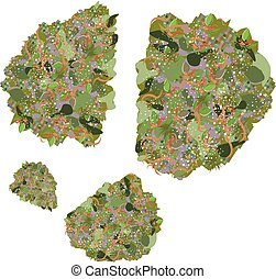 Marijuana Buds - cannabis buds vector image