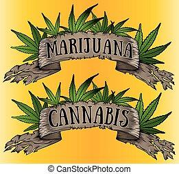 cannabis green leaf paper parchment