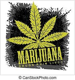 Marijuana Cannabis leaf on a grunge black background