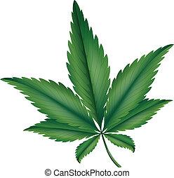 Marijuana - Illustration showing the marijuana