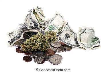 marijuana, espèces, changement, &
