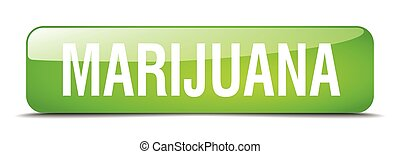 marijuana green square 3d realistic isolated web button