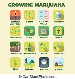 Marijuana growing icon set. Medical cannabis plants...