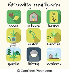 Marijuana growing icon set. Vector illustration in flat style.