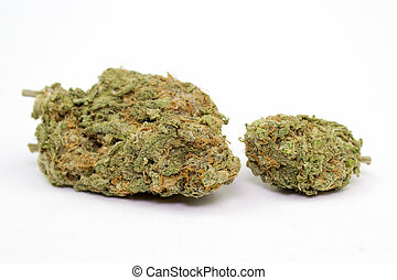 marijuana, knopp, vit fond