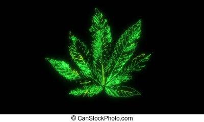 marijuana leaf that lights up with lasers - marijuana leaf...