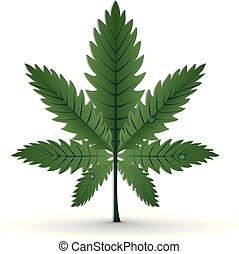 Marijuana Cannabis Leaf Plant Background Vector Image Design