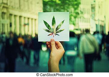 marijuana, legalization