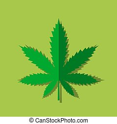 Marijuana or cannabis