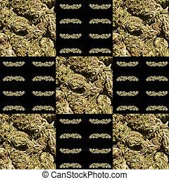 marijuana, Plano de fondo
