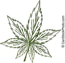 marijuana, vettore, schizzo, bianco, fondo., illustrazione