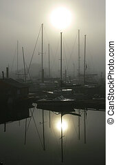 Marina - A foggy fall morning at the marina