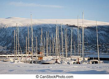 marina, dans, tromso, norvège, dans, hiver