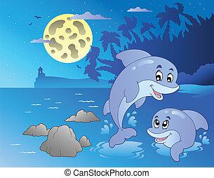 marina, delfini, notte, felice