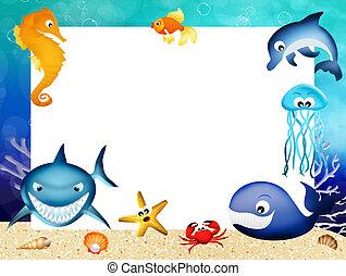 marina, marco, animales