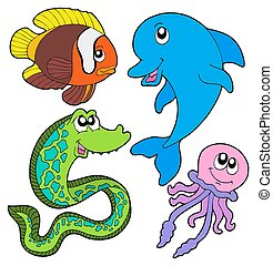 marina, peces, colección