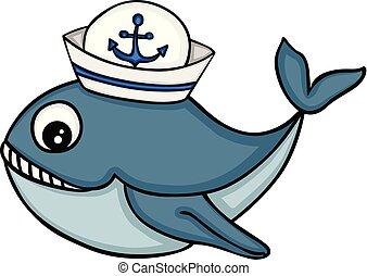 marinaio, balena, cappello, carino