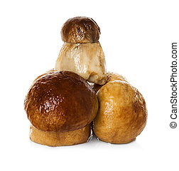 marinated mushrooms isolated on white
