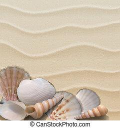 Marine background with seashells on sand.
