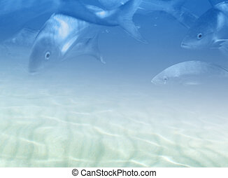 Marine fauna illustration - Soft underwater background,...
