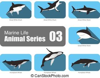Marine life cartoon collection, vector