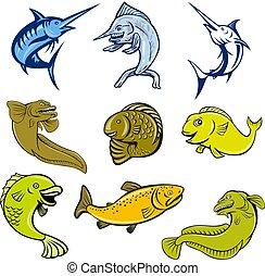 marine-life-mascot-CARTOON-SET