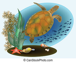 Marine life with turtle starfish