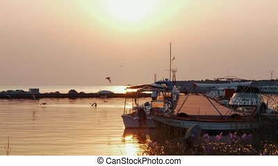Picturesque view of the harbour with pier, boats at anchor and sea-gulls settling on the water to find the food. Water sparkling in golden light of sunset