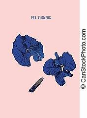mariposa, bosquejo, arte, ilustración, mano, flores, dibujado, línea, guisante