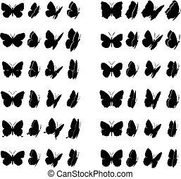 mariposa, colección, 2